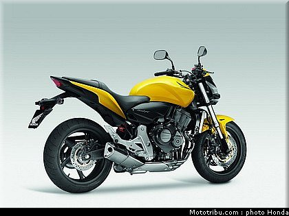 mototribu honda 600 hornet 2011. Black Bedroom Furniture Sets. Home Design Ideas